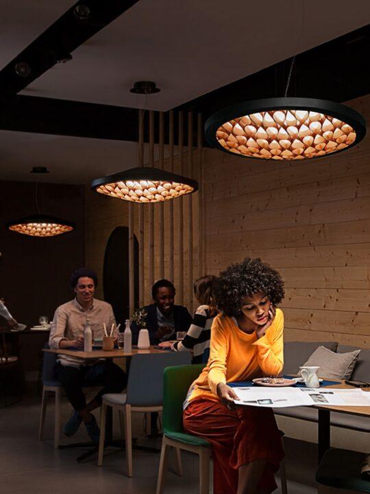 LZF Cervantes Pendelleuchte aus Furnierholz bei DesignOrt Onlineshop Lampen Berlin